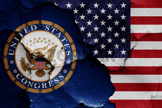 flags of United States Congress and USA painted on cracked wall