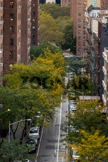 Autumn foliage color in Two Bridges district Lower Manhattan