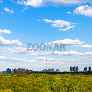 residential district under blue sky near forest