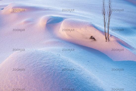 Snow formations, Soeroeya Island, Finnmark, Norway