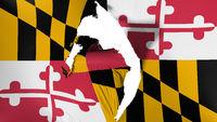 Damaged Maryland state flag