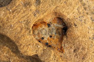Love Heart eroded rock