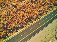 Beautiful road across the mountains of National Park, downward aerial view from drone