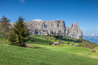 Alpe di Siusi with a view of the Schlern