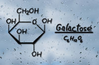 Structural model of Galactose