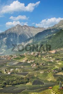 Blick auf Dorf Tirol nahe Meran,Suedtirol,Trentino,Italien