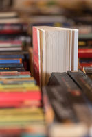A wealth of books support the enjoyment of reading