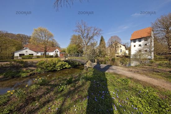 Bispinghof, Nordwalde, Muensterland, North Rhine-Westphalia, Germany, Europe