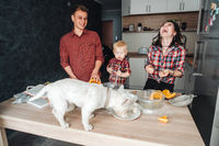 Dog on the kitchen table. Happy family in the kitchen
