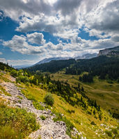 Summer mountain Durmitor National Park, Montenegro