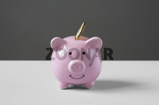 piggy bank or money box with coin
