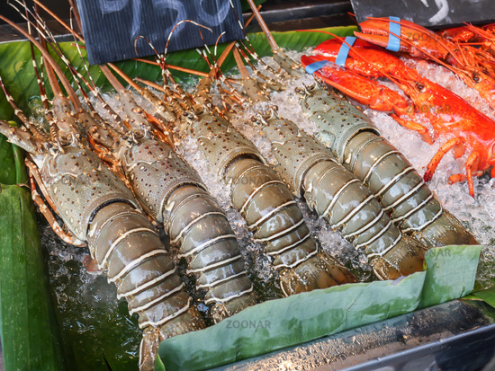 Fresh seafood arrangement displayed on the ice shelf for sale on the night street market in hua hin, Thailand. ready to cook.