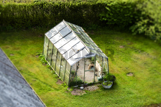 Green house with glass windows on a green lawn