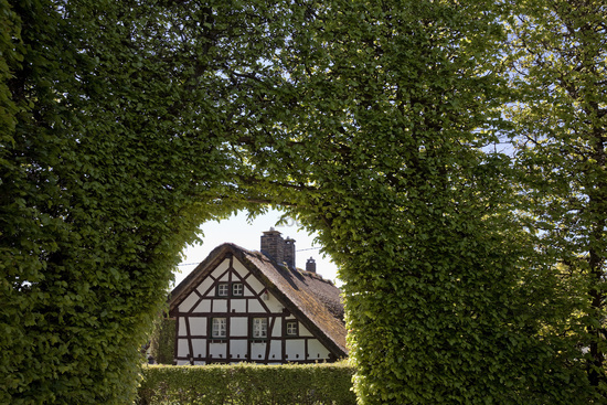 half-timbered house behind metre-high beech hedge with archway, Monschau, Eifel, Germany, Europe