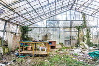 Demolished Greenhouse