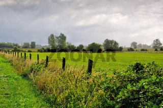 Poel Weide - a green pasture on the island of Poel in northern Germany