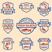 Set of salmon