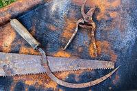Rusty tools on the rusty sheet