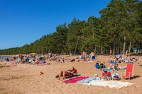 Sandy beach at the lake and forest
