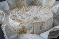 Camembert cheese from Normandy, Camembert de Normandie