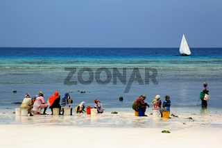 African women in traditional dress on the beach of village Nungwi. Zanzibar, Tanzania