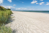 Beautiful white beach with green seagrass at the Baltic Sea in Northern Germany