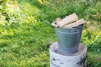 Bucketful of the firewood on the birch log