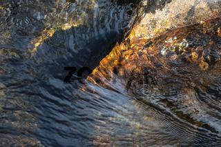 Bachlauf, Muddus Nationalpark, Lappland