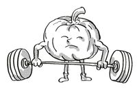 Pumpkin or Squash Healthy Vegetable Lifting Barbell Cartoon Retro Drawing