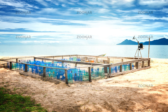 Protection and surveillance enclosure for sea turtle eggs on a beach on Borneo