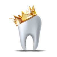 Realistic white Tooth in golden crown isolated on white