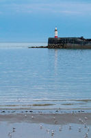 Newhaven Lighthouse on July evening