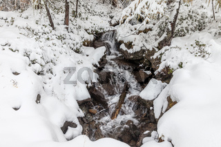 Mountain stream in Valle Aurina