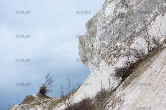 Chalk cliff landscape on Moens Klint