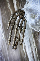 Skeleton hand on the background of an old white dress