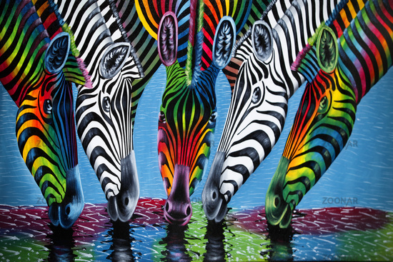 Picture with the image of african animals