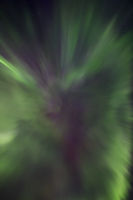 Northern lights in the shape of a corona aurora borealis