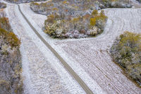 Forest and corn field dusted by early snow