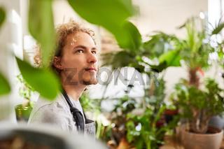 Gärtner oder Florist mit vielen Grünpflanzen