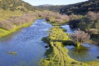 Little River in the Extremadura, near La Serena