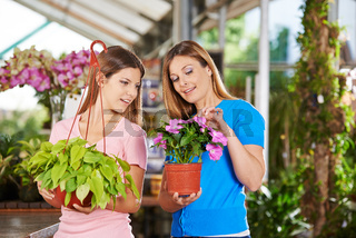 Mutter und Tochter kaufen Pflanzen im Gartencenter