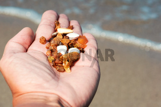 amber stones in the palm, raw amber in the hand