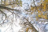 Omberg ekopark and nature reserve
