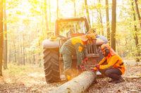 Waldarbeiter beim Holzrücken im Wald