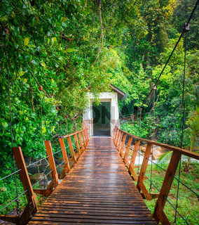 Footbridge at Penang national park, Malaysia