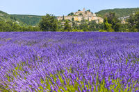 old village Banon on a hill with lavender field on its feet