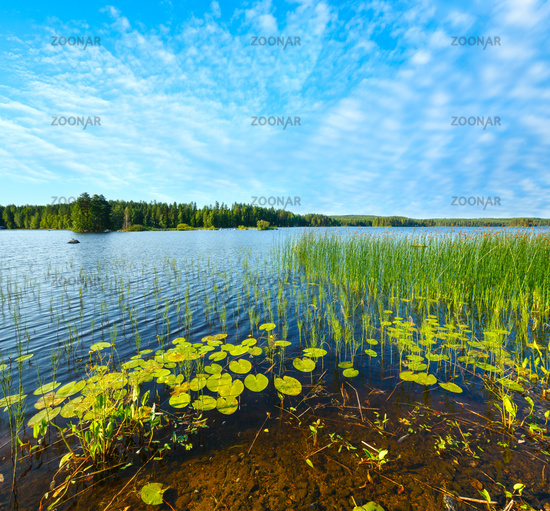 Lake summer view, Finland