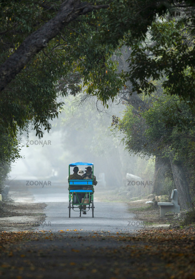 Cycle rickshaw, Bharatpur, Rajasthan, India