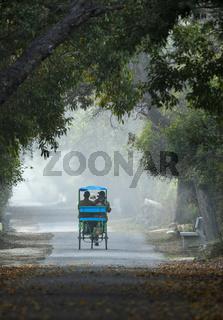 Cycle rickshaw, Bharatpur, Rajasthan, India