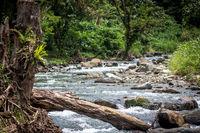 A peaceful river in Papua New Guinea
